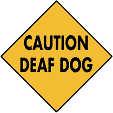 Caution Deaf Dog